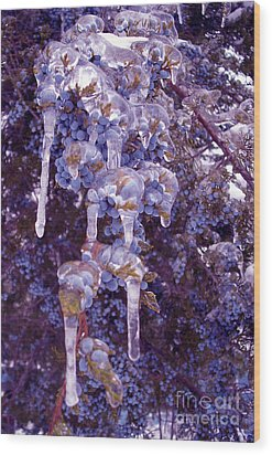 Ice In Purple Wood Print by R McLellan