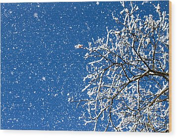 Wood Print featuring the photograph Ice In The Air by Jay Nodianos