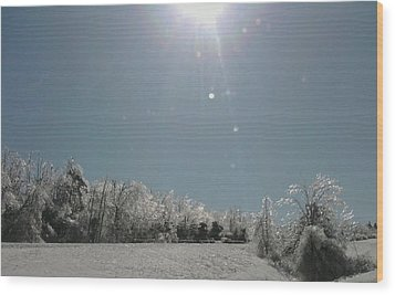 Wood Print featuring the photograph Ice Kissed by Ellen Levinson