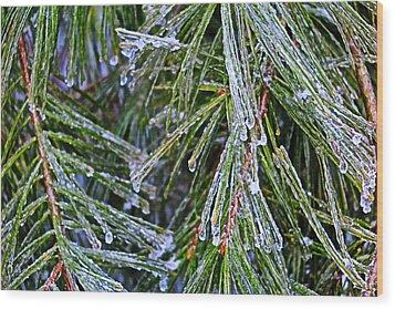 Ice On Pine Needles  Wood Print by Daniel Reed