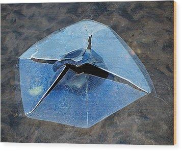 Ice Penetration Wood Print by Gary Slawsky