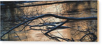 Ice Reflection  Leif Sohlman Wood Print