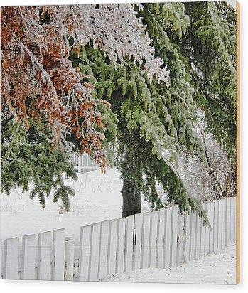 Ice Storm 3 Wood Print by Sophie Vigneault