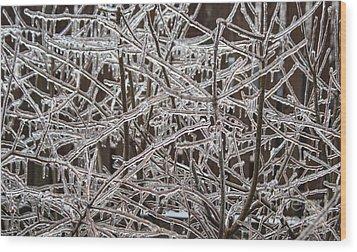 Ice Storm Wood Print by Arlene Carmel