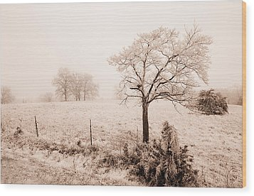 Ice Storm Wood Print by Brent Craft