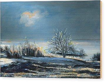 Ice Storm Coast Of Maine Wood Print