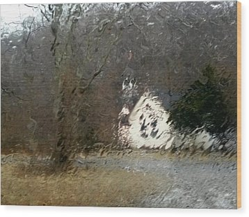 Wood Print featuring the photograph Ice Storm by Steven Huszar