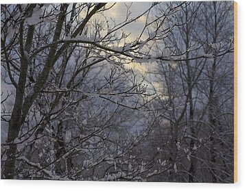 Winter's Embrace Wood Print by Jane Eleanor Nicholas