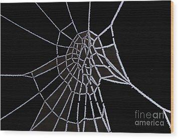 Ice Web Wood Print by Carol Lynch