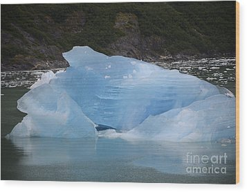 Iceberg At Tracy Arm Fjord Juneau Alaska Wood Print by JRP Photography