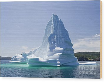Wood Print featuring the photograph Iceberg Canada by Liz Leyden