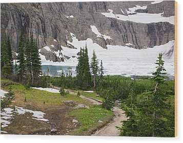 Iceberg Lake Wood Print