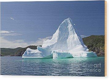 Wood Print featuring the photograph Iceberg Newfoundland Canada by Liz Leyden