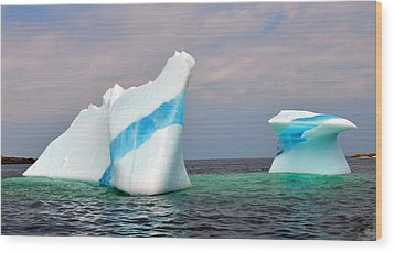 Iceberg Off The Coast Of Newfoundland Wood Print by Lisa Phillips