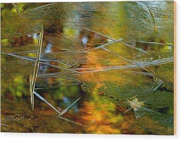 Iced Fall Wood Print