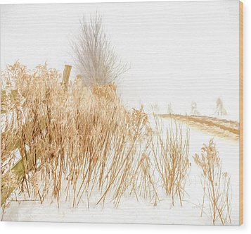 Iced Goldenrod At Fields Edge - Artistic Wood Print