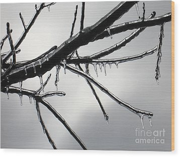 Wood Print featuring the photograph Iced Tree by Ann Horn