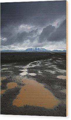 Iceland After The Rain Wood Print by Nina Papiorek
