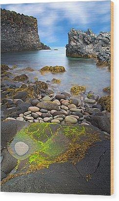 Iceland Rocky Coast Landscape Wood Print by Dirk Ercken