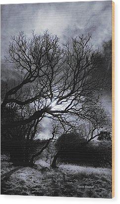 Ichabod's Pathway Wood Print by Donna Blackhall