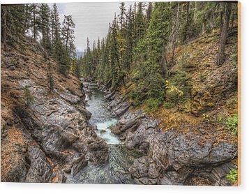 Icicle Gorge Wood Print
