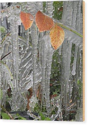 Icicles And Orange Leaves Wood Print