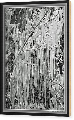 Icicles In Black And White Wood Print by Carol Groenen