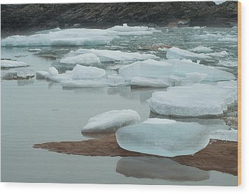 Icy Beach Wood Print by Jill Laudenslager