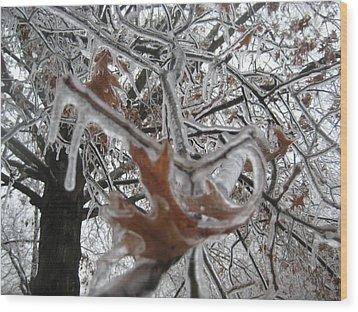 Icy Beckoning Wood Print