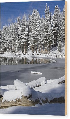 Icy Cold Wood Print by Chris Brannen