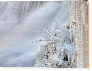 Wood Print featuring the photograph Icy Fingers by Wanda Krack