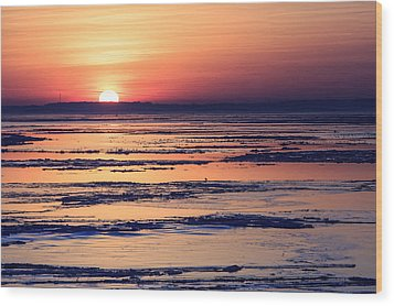 Icy Sunrise Wood Print by Jennifer Casey