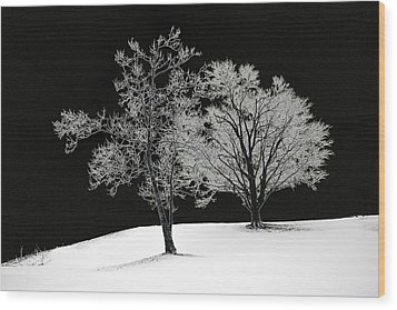 Icy Trees Wood Print by Wendell Thompson
