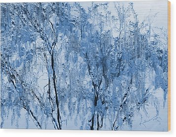 Icy Winter Wood Print by Kume Bryant