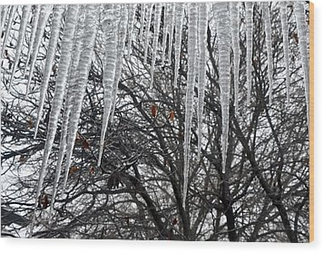 Icycles On The Eave Wood Print