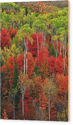 Idaho Autumn Wood Print