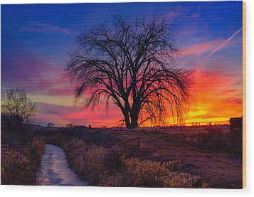 Idaho Winter Sunset Wood Print by Greg Norrell