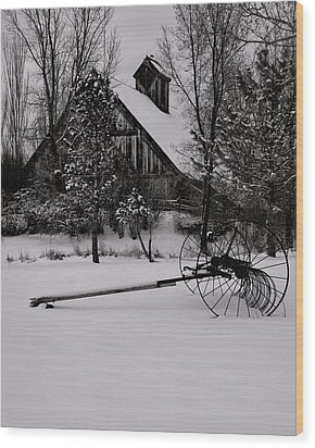 Idle Time - Waiting For Spring Wood Print by Steven Milner