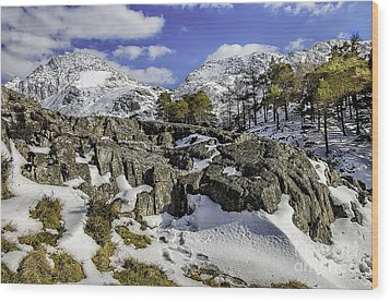 Idwal At Winter Wood Print by Darren Wilkes