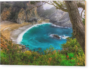 Idyllic Cove-1a. Mc Way Falls Julia Pfeiffer State Park - Big Sur Central California Coast Spring Wood Print by Michael Mazaika