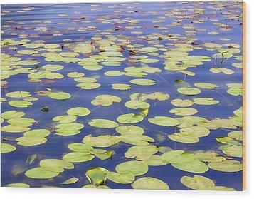 Idyllic Pond Wood Print by Joana Kruse
