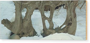 Wood Print featuring the photograph Idyllwild Tree Sculpture by Nora Boghossian