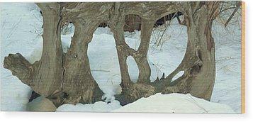 Idyllwild Tree Sculpture Wood Print by Nora Boghossian