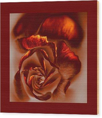 If A Rose Is A Rose Wood Print by Li   van Saathoff
