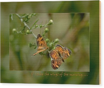 If I Take The Wings Of The Morning Wood Print by Denise Beverly