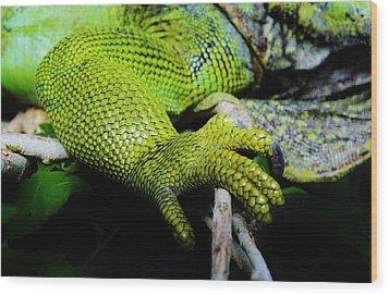 Iguana Details Wood Print