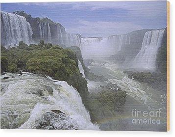 Iguazu Falls 1 Wood Print