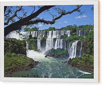 Iguazu Falls In Argentina Wood Print