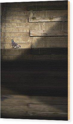 Il Piccolo Guardiano Wood Print by Bob Orsillo