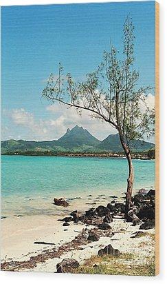 Ile Aux Cerfs Mauritius Wood Print by David Gardener